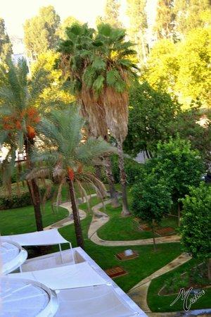 Silken Al-Andalus Palace Hotel : Jardines