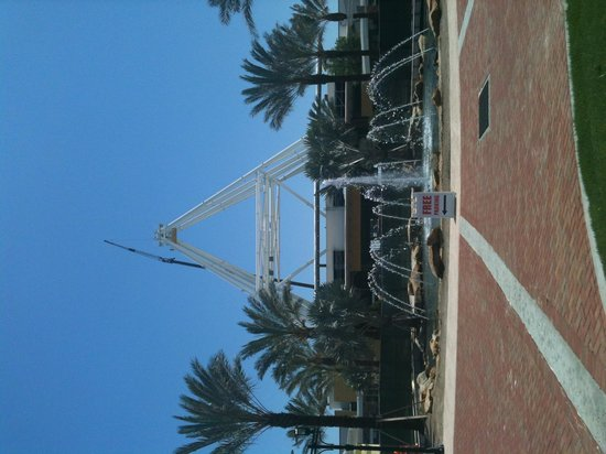 Yard House Driveway with new Orlando Eye being constructed