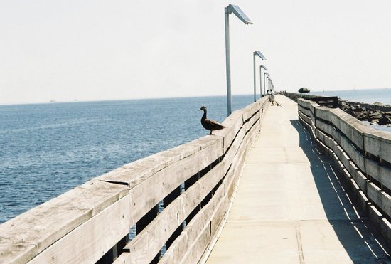 Fort Clinch State Park : the fishing pier