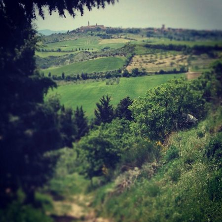 Walks of Italy: Tuscan Hill Towns
