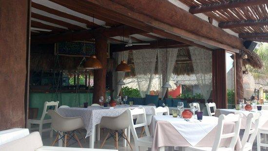 Holbox Hotel Casa las Tortugas - Petit Beach Hotel & Spa : Mandarina