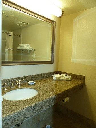 Chaparral Suites Scottsdale: Chaparral Suites -- bath