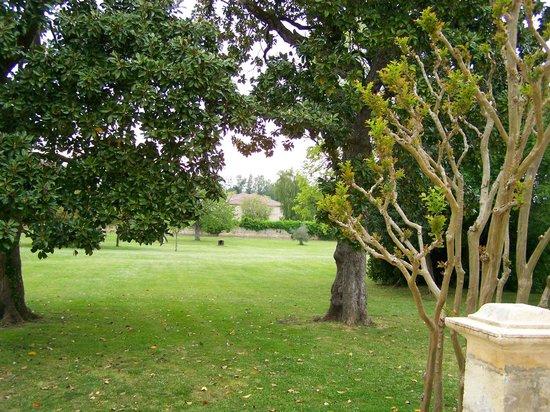 Chateau Ormes de Pez: Expansive, beautiful grounds.