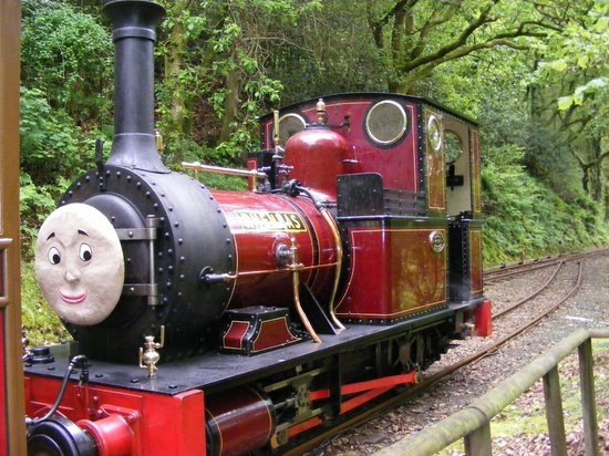 Talyllyn Railway: Engines all dressed up for Duncan Day