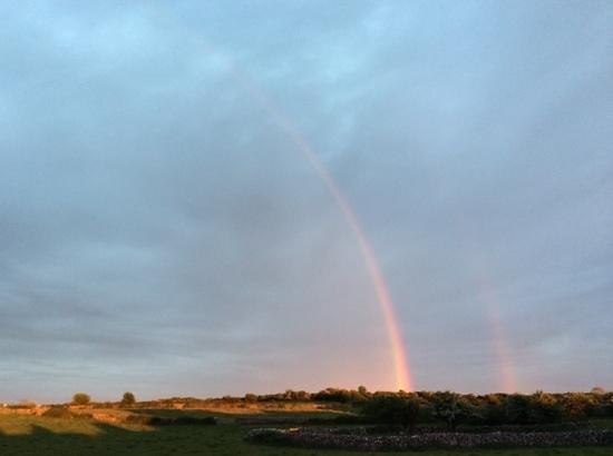 Carraig B&B: double rainbow out back