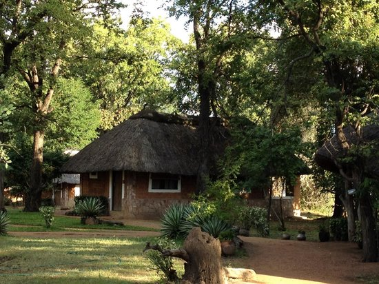 The Wildlife Camp: Our basic yet comfortable chalet