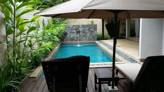 The Banjaran Hotsprings Retreat: The private pool in my bungalow.