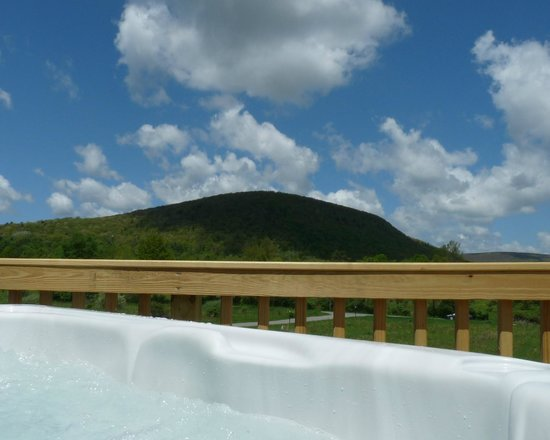 Mountain Horse Farm B&B and Wellness Retreat: View from Hot Tub