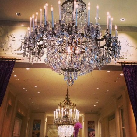 The Mayflower Hotel, Autograph Collection: Chandelier