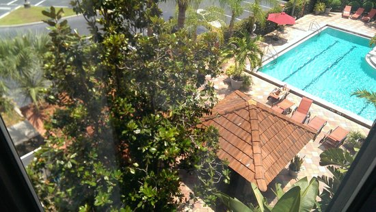 Crowne Plaza Fort Myers at Bell Tower Shops: Nice view