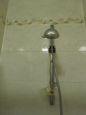 Arrochar Hotel : The drooping shower