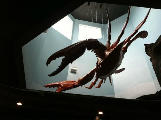 Laishley Crab House: In the center skylight