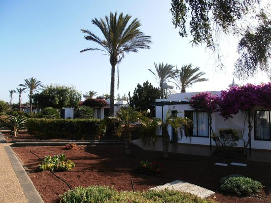 Hotel Club Playa Blanca: Une allée