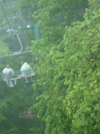 Rainforest Zip Line at Mystic Mountain : bit rainy