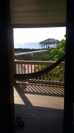 Seagrape Plantation Resort: View from room
