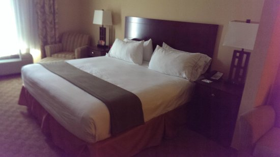 Holiday Inn Express & Suites Tampa USF-Busch Gardens : Bed