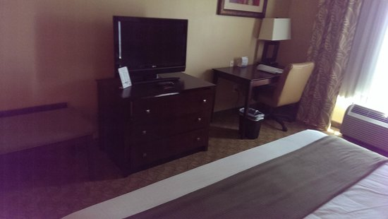 Holiday Inn Express & Suites Tampa USF-Busch Gardens : Desk