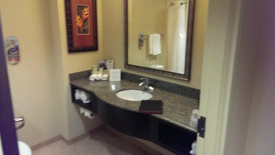 Holiday Inn Express & Suites Tampa USF-Busch Gardens : Vanity