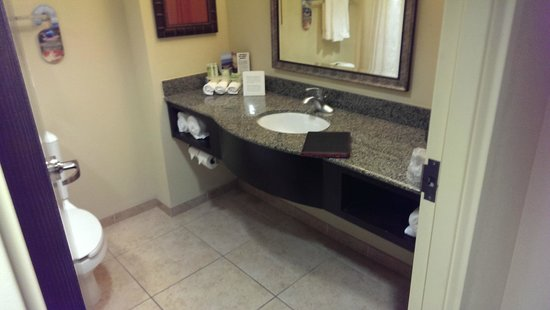 Holiday Inn Express & Suites Tampa USF-Busch Gardens : Bathroom