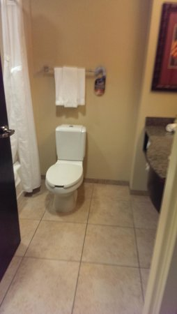 Holiday Inn Express & Suites Tampa USF-Busch Gardens: Toilet