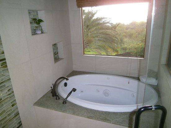 Kealakekua Bay Bed & Breakfast: I love this bathroom!