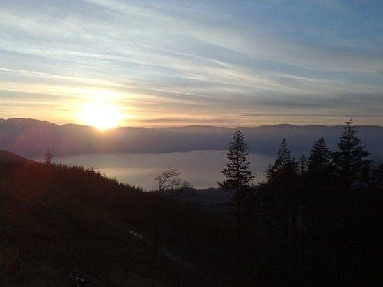 Mourne Wood B & B: Views of carlingford Lough from Rostrevor Forest