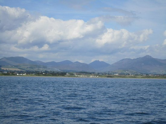 Mourne Wood B & B: the Mourne Mountains from Carlingford Lough
