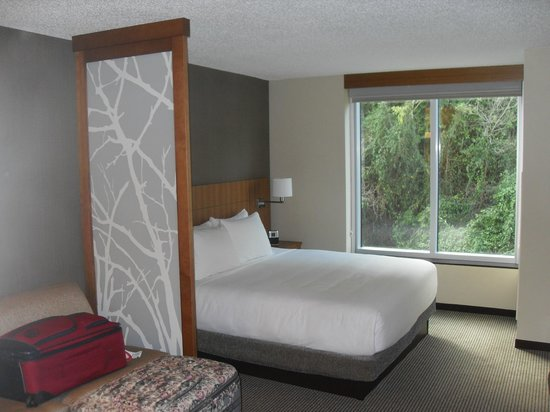 Hyatt Place San Juan/Bayamon: King Bed with view of hillside (rear of hotel)
