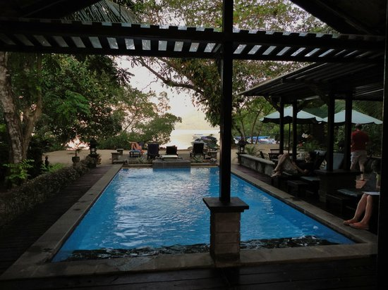 The Village Bunaken: From the dining room - pool and bar