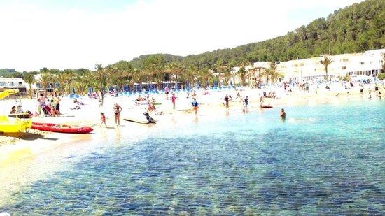 San Miguel Beach Club: beach