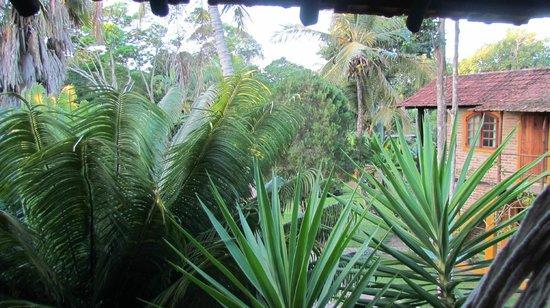 Pousada Atlantida: jardim