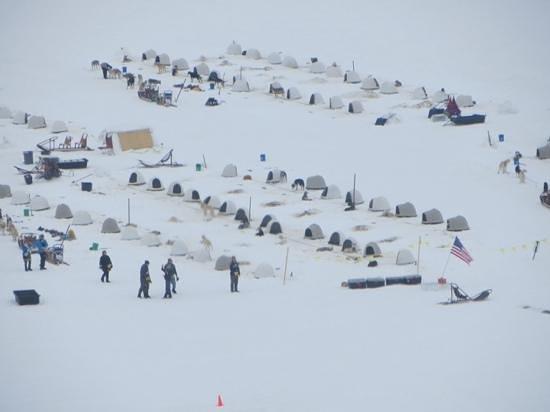 Era Helicopters: Dog Sledding Camp on the Glacier