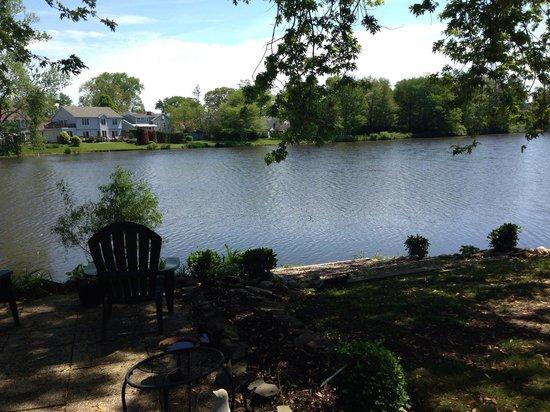Walden on the Pond: Walden pond