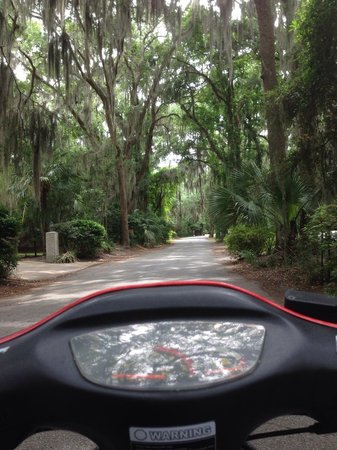 Your Moped Operandi : St. Simons island.