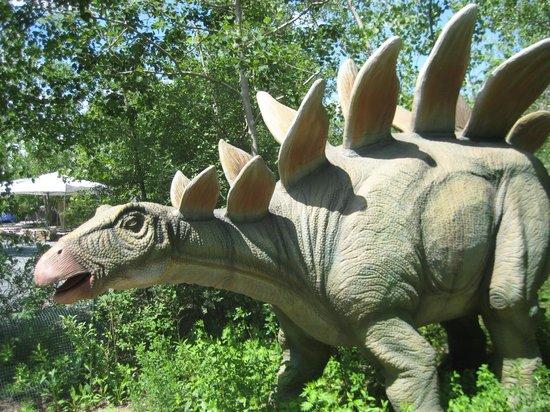 Field Station: Dinosaurs : Dino 2