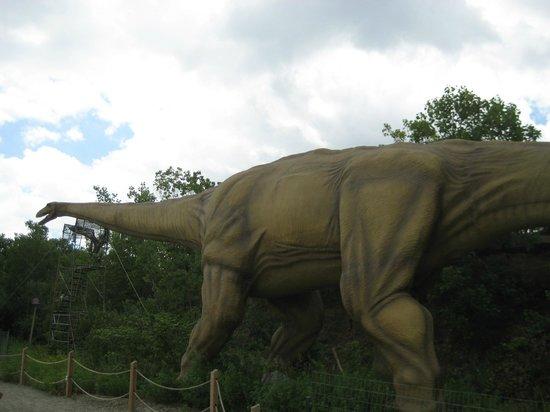 Field Station: Dinosaurs : Brontosaurus