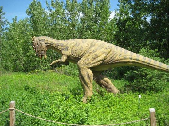 Field Station: Dinosaurs : Dino 1