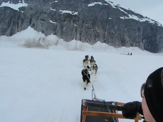 Era Helicopters: Dog Sledding on The Glacier