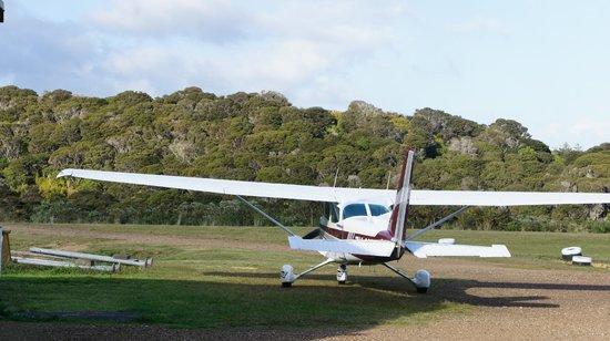 Flight Hauraki: The aircraft