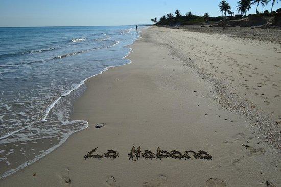 Gran Caribe Club Atlantico: Playa del hotel 5