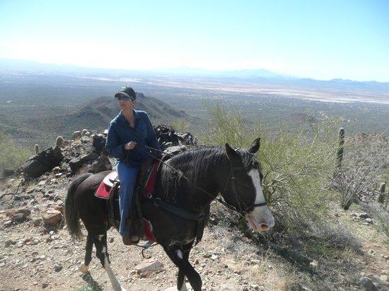 JW Marriott Tucson Starr Pass Resort & Spa: Horseback Riding in the Sonoran National Park