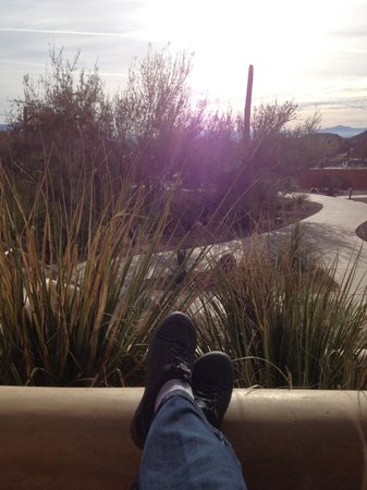 JW Marriott Tucson Starr Pass Resort & Spa: Sitting on the porch sipping Starbucks in the morning.