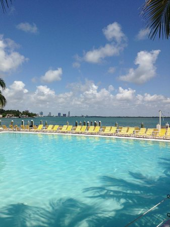 The Standard, Miami: View from the Pool
