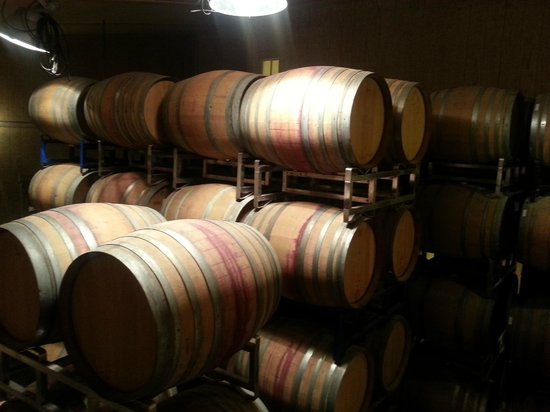 Sustainable Vine Wine Tours: Demetria Estate
