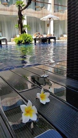 The Bene Hotel : Poolside