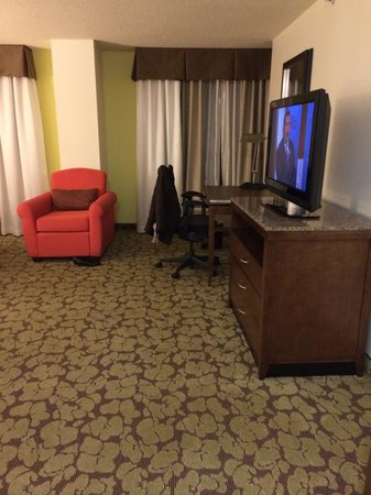 Hilton Garden Inn Atlanta Perimeter Center: Room from the door.