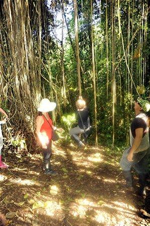 Huasquila Amazon Lodge: during a Huasquila hike