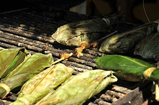 Huasquila Amazon Lodge : bugs for lunch?????