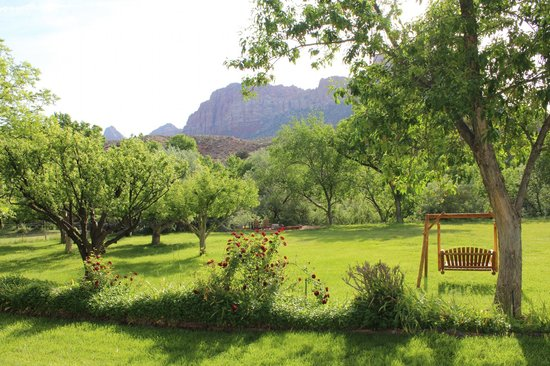 Canyon Vista Lodge - Bed & Breakfast: Backyard