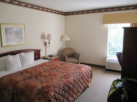 Comfort Inn Blythewood: Photo of the room
